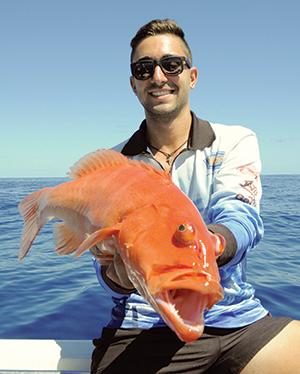 coral trout 3
