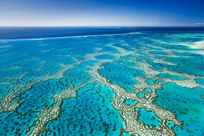 Great Barrier Reef visitors urged to be Reef smart