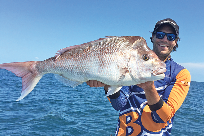 moreton bay snapper summer