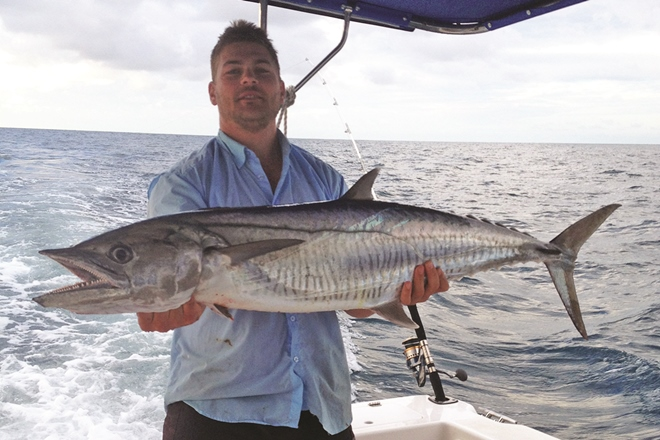 stanage bay mackerel