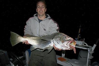 Fishing the Gold Coast for elusive jewfish - Bush 'n Beach