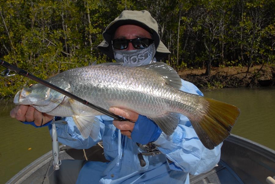 weipa fishing barra