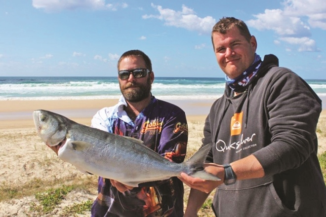 fraser island fishing tailor run
