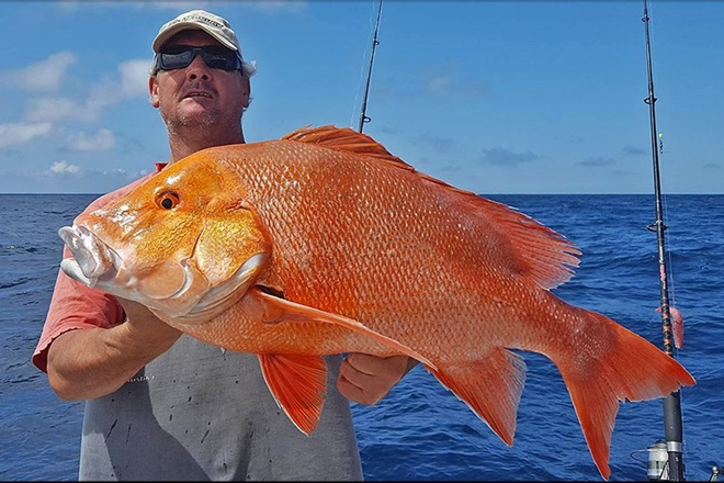 red emperor from offshore windows