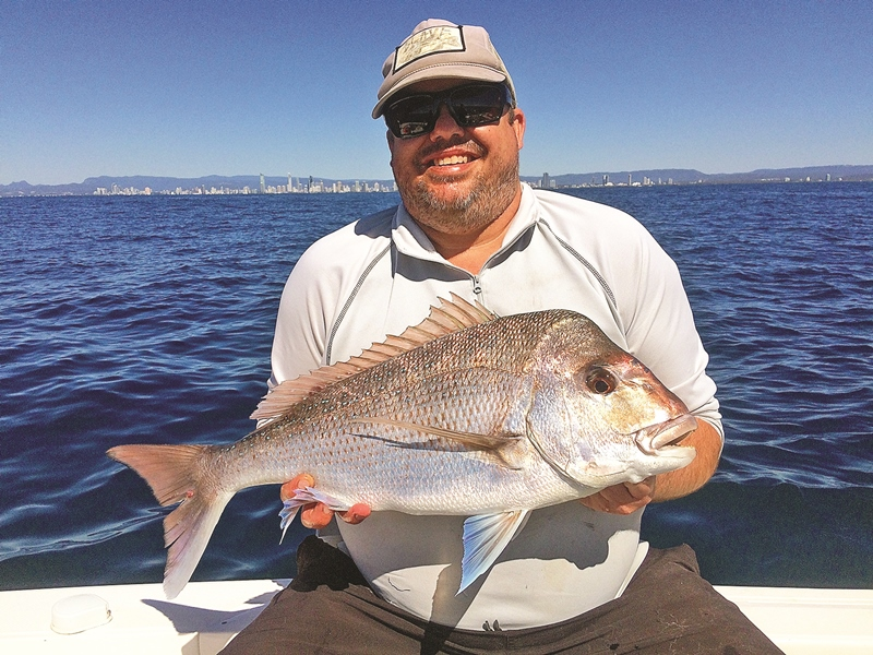 gold coast snapper and whiting