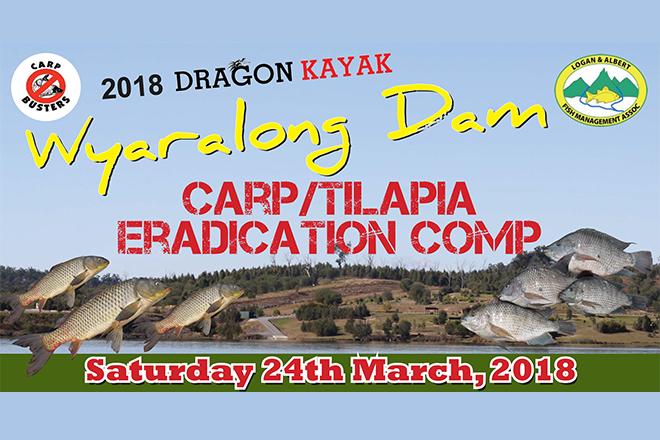 wyaralong dam pest fish eradication comp