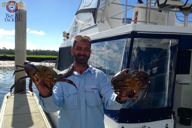 mud crabs and prawns gold coast