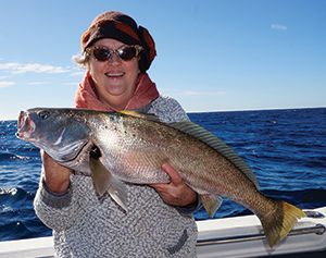 offshore mulloway
