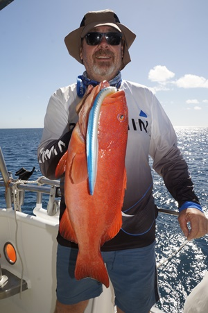 swain reefs fishing