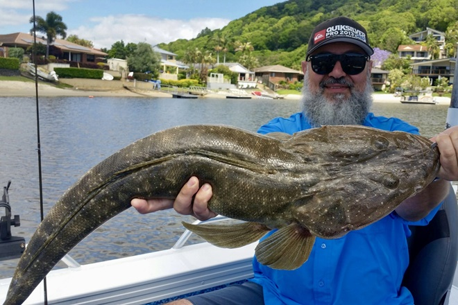 big flathead gold coast