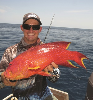 cape york trout