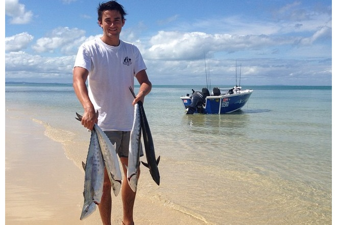 mackerel found throughout moreton bay