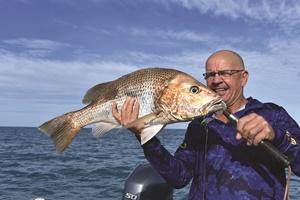 fishing Weipa