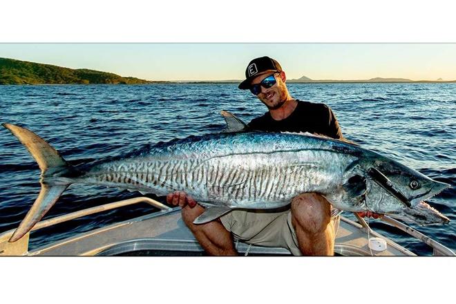 heavily targeted pelagics spanish noosa