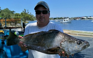 gold coast offshore fishing quite good