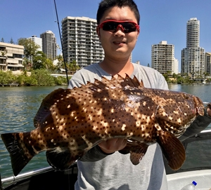 gold coast broadwater fishing