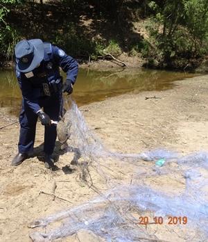 illegal fishing nets logan river