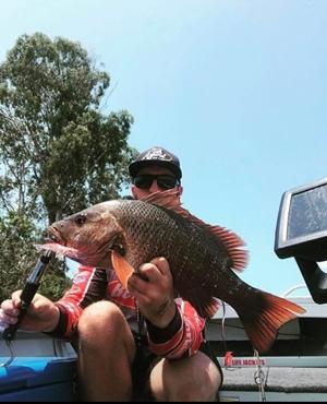 australia day weekend fishing bundaberg