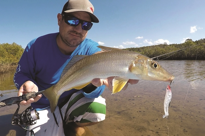 Top tips for targeting whiting on surface