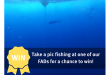 Fish near a FAD before February 13 to win wicked prizes!