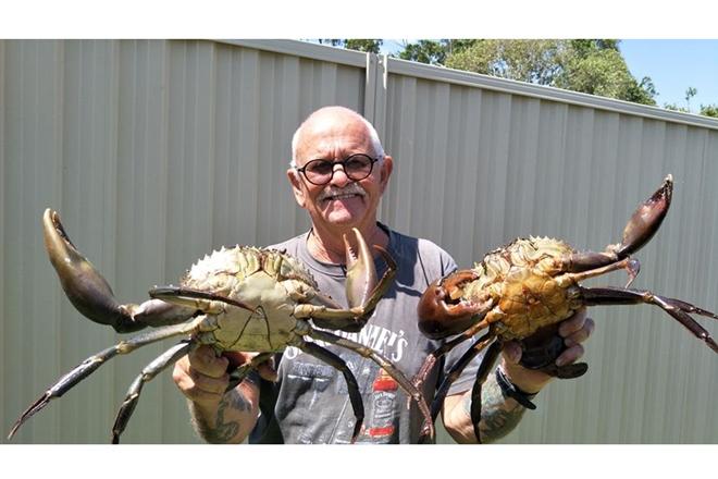 mud crabs good target gold coast