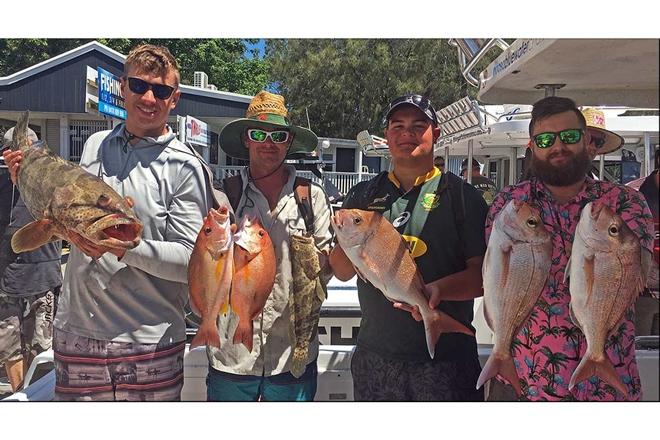 fired up reefies sunshine coast