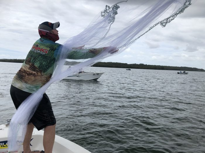 Cant net prawns.