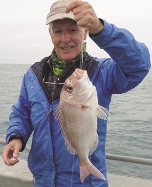 fishing peel island moreton bay